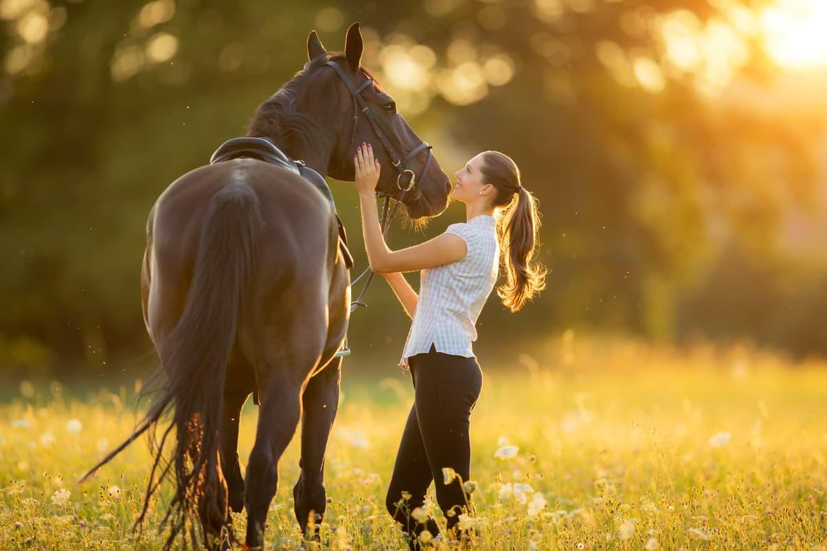 Låna pengar häst